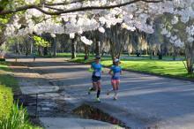 Savannah running