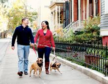 Lucky Savannah Pet-Friendly Vacation Rentals
